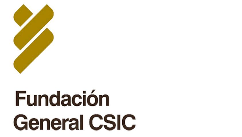 fundacion-csic-smart-cities